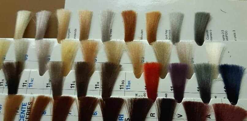 Natural Choice Hair System Color Swatches
